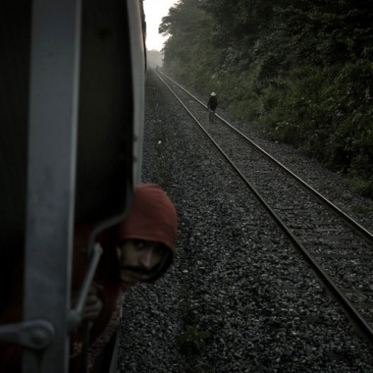 Tierra Blanca-Veracruz,Mexico 2012 A migrant during an unexpected stop of the train on which it travels, look forward thinking in some danger. Each year, about 400,000 migrants use freight trains to travel from the south of Mexico to the northern border with the United States.