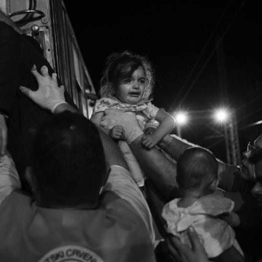 Refugees mainly from Syria, but also Afghanistan, Iraq and parts of Africa making their way across Europe. Walking from Serbia across border to Croatia, where they gathered at Tovarnik to board trains and buses to be transported to either Hungary or Slovenia, then to be taken to border with Austria and onward.  by James Nachtwey
