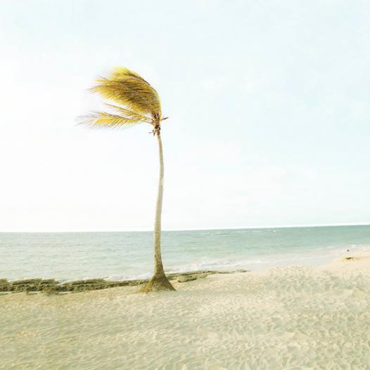 Love in Cuba