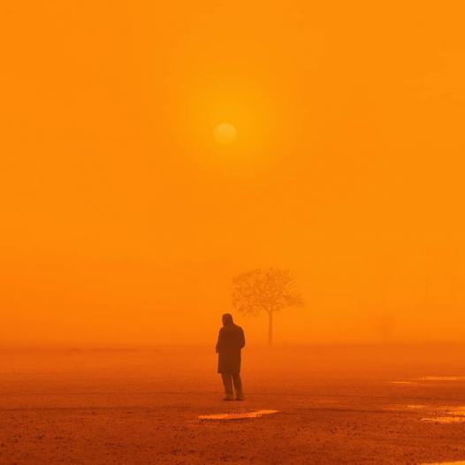 Orange World.